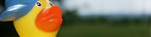 Der Herbst steht vor der Tür! - Nutzen Sie unsere Topangebote im Preisvergleich Ihres ONLINE-KAUFHAUSES auf www.rindschwein.de!